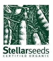 Stellar Seeds